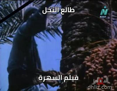 ميم من فيلم طالع النخل - طالع النخل   فيلم السهرة